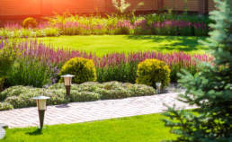 6-tips-to-having-a-beautiful-yard